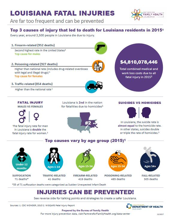 Top causes of fatal injury infographic (2015 data)